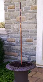 Installing Chritmas topiary